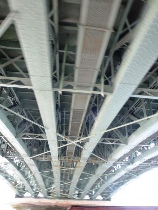 Брюшко какого моста?