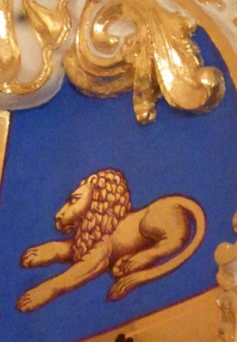 Лев внимательно отдыхает