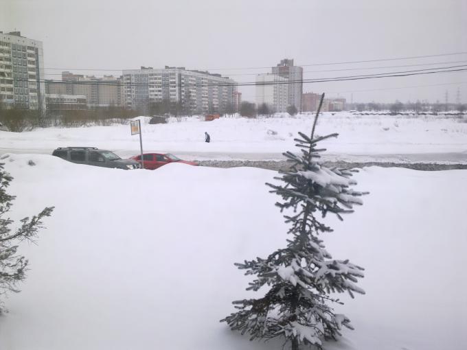 Любителям Ленинграда